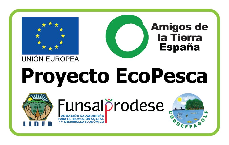 Ir a Ecopesca: un avance para el sector pesquero y la biodiversidad del Golfo de Fonseca