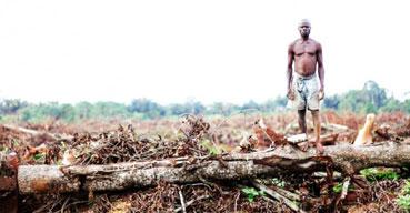 Ir a Bancos europeos y fondos de pensiones financian el acaparamiento de tierras en Uganda