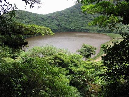 Ir a El Volcán Madera: la biodiversidad protegida por las comunidades de la zona