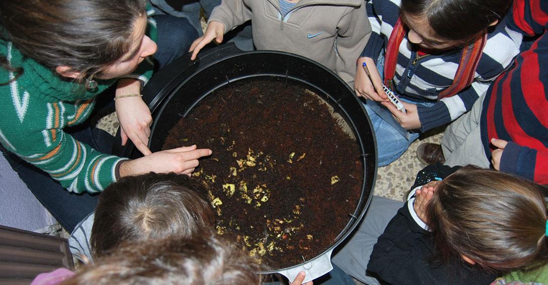 Ir a Compostaje: residuos orgánicos
