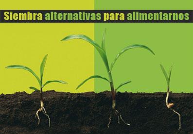 Ir a Jornadas: Sembrando alternativas para alimentarnos