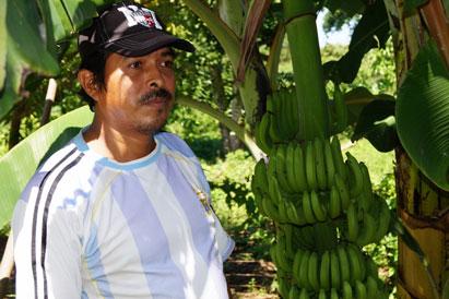 Ir a Sembrando agua y oxígeno en Ometepe, Nicaragua