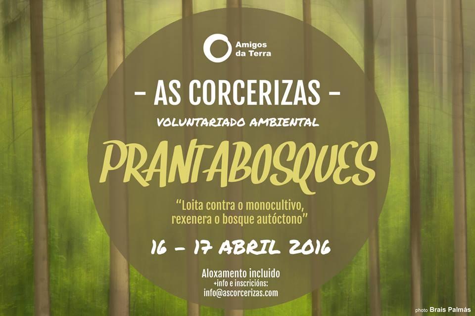 Ir a Ourense: Xornada de Voluntariado Ambiental Prantafragas en As Corcerizas