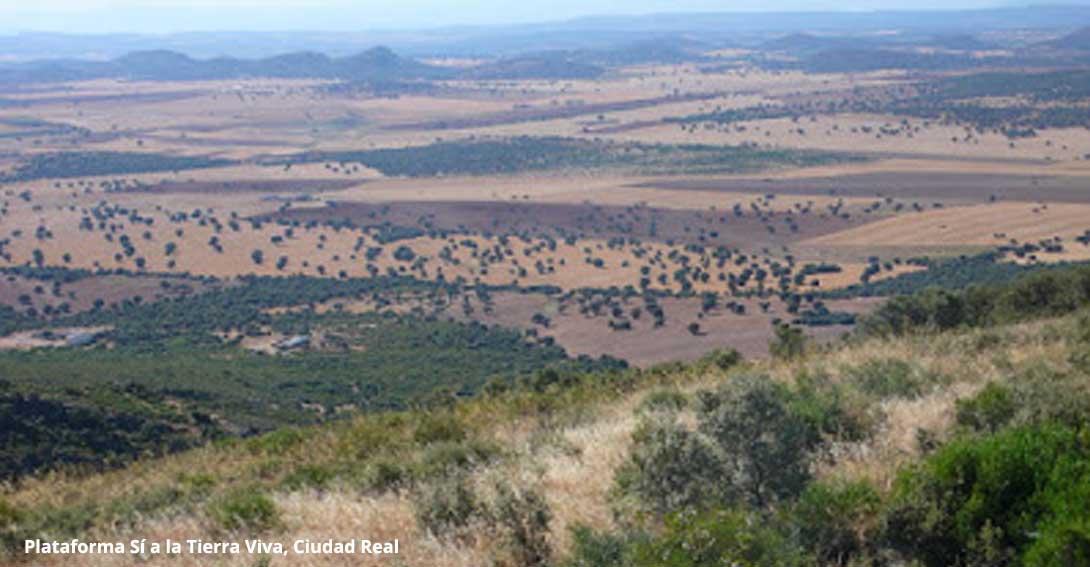 Ir a Apoyo ecologista en defensa de la tierra viva y contra el proyecto de 'tierras raras' en Campo de Montiel