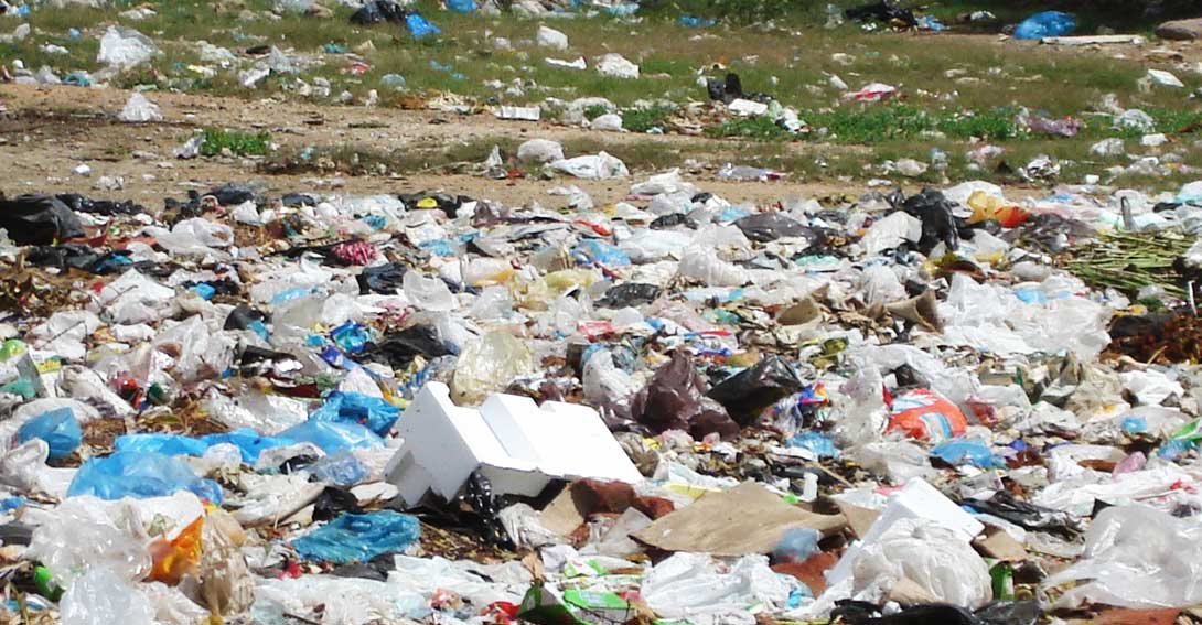 Ir a Las bolsas de plástico, un problema con solución