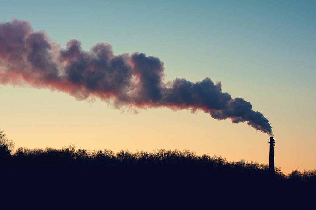 Ir a Alianza por el Clima presenta su propuesta de contenidos para una Ley de Cambio Climático y Transición Energética