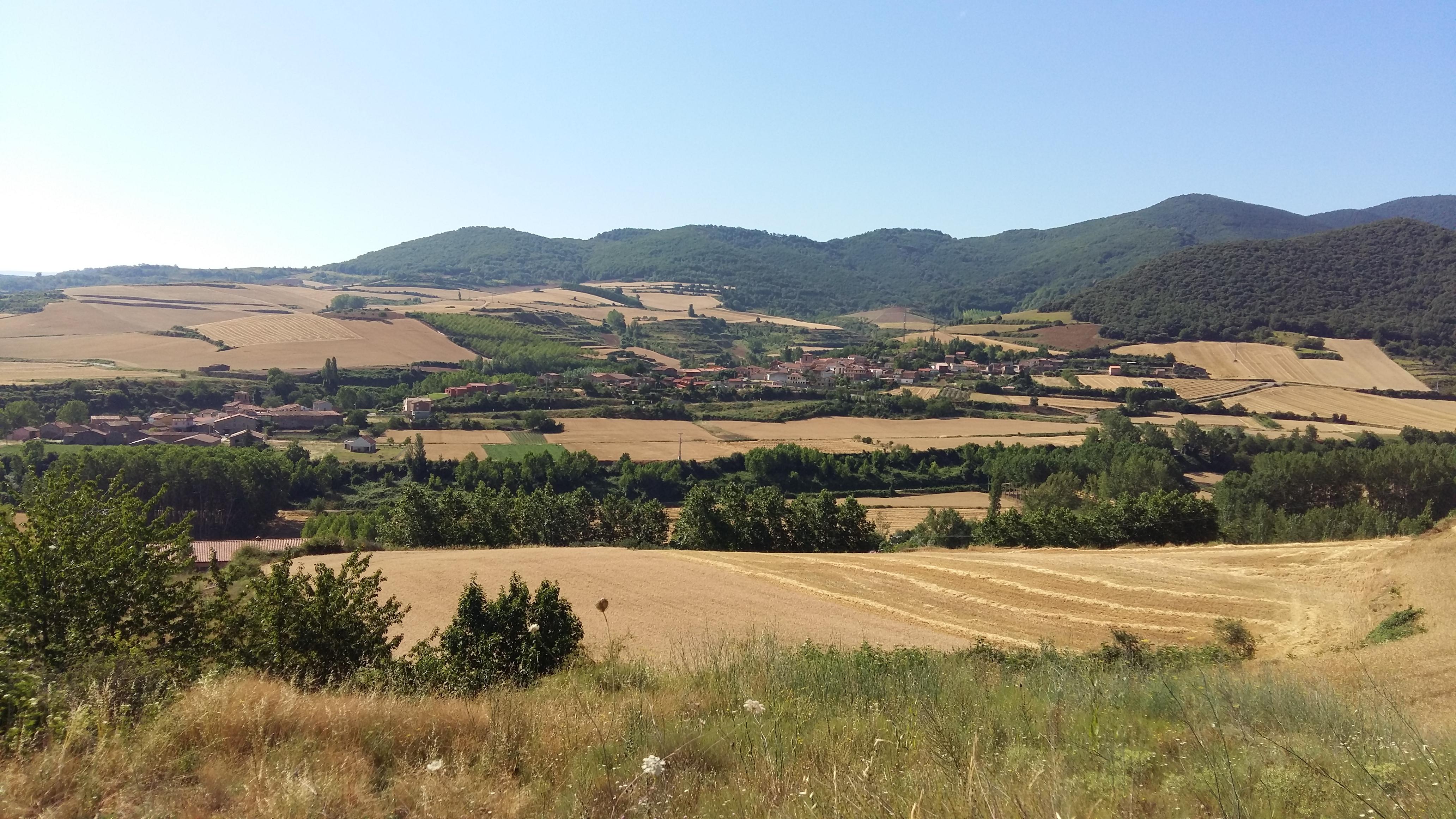 Ir a La Rioja: Plantación de arbolado autóctono contra el cambio climático