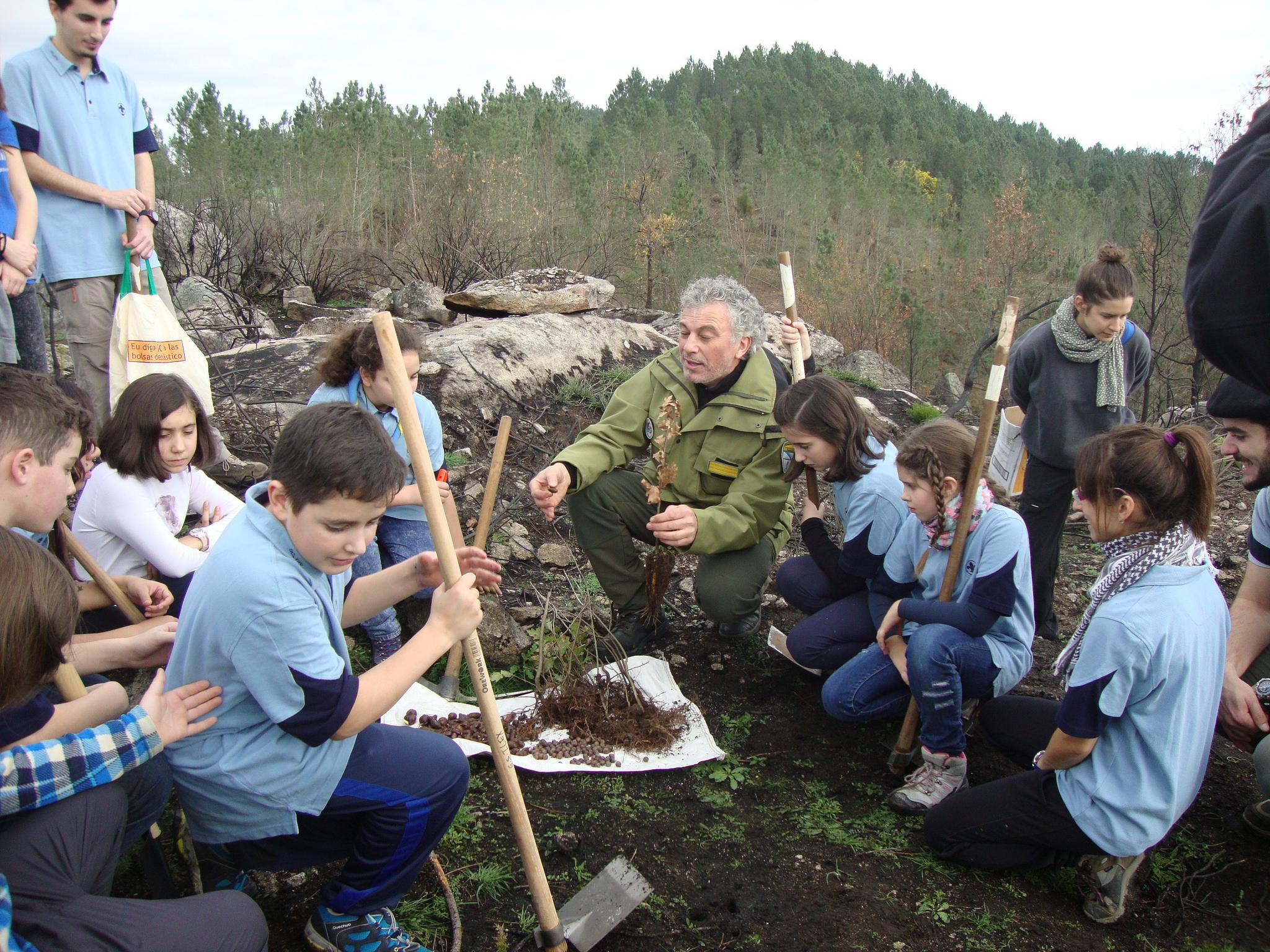 Ir a Galicia: Repoblación forestal en Palmés, Ourense