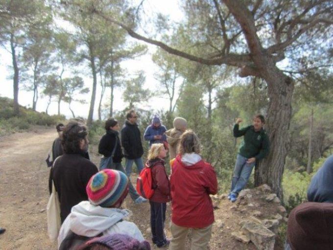 Ir a Eivissa: Visita guiada para descubrir 'es Amunts'