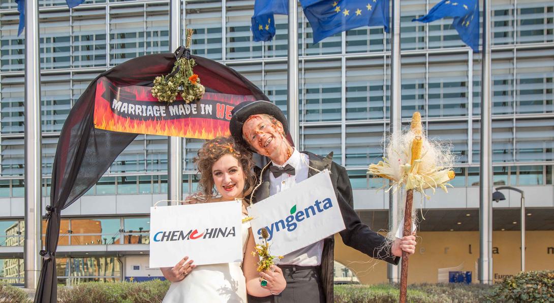 Ir a La Comisión Europea apuntala el monopolio mundial de semillas