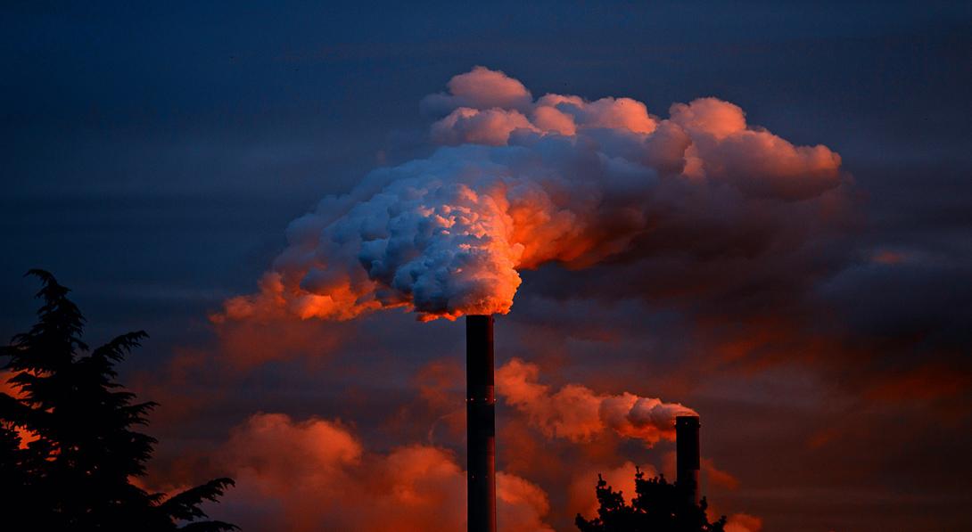 Ir a Alianza por el Clima recuerda la importancia de un debate transparente, inclusivo y equilibrado sobre la Ley de Cambio Climático