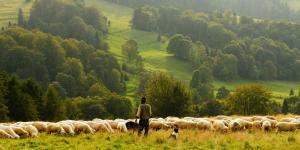 La agroecología aumenta las cosechas