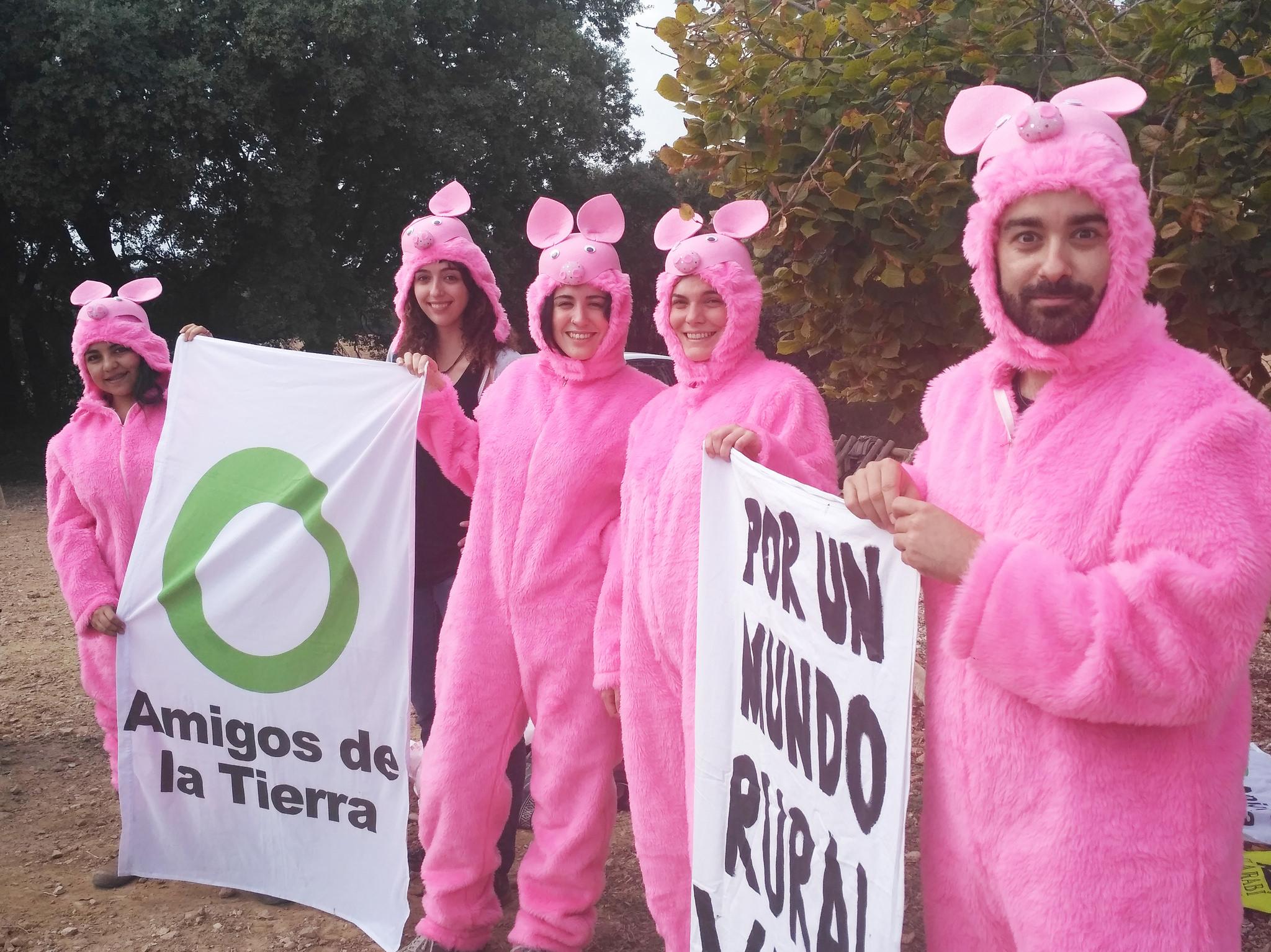 Ir a Madrid: Acción de «A cada Industria Porcina llega su San Martín»