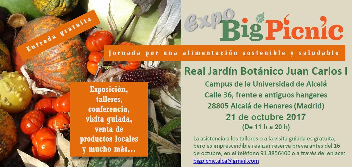 Ir a Madrid: Expo Big Picnic, RJB Alcalá de Henares