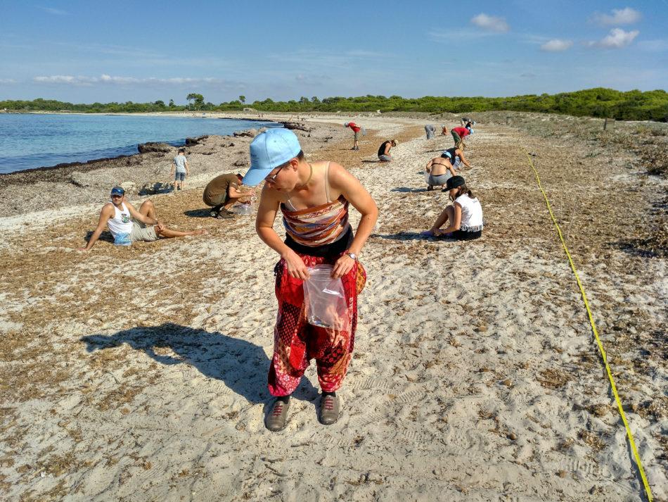 Ir a Mallorca: Limpiezas de residuos y microplásticos en tres playas