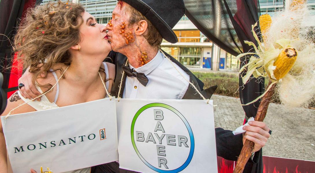 Ir a La ciudadanía en España rechaza la fusión entre Bayer y Monsanto