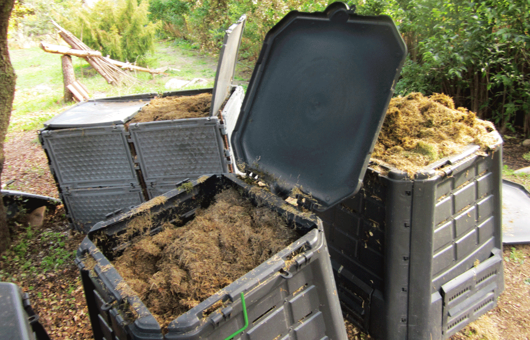"""Ir a """"Quiero un marrón"""": separar de forma adecuada los residuos orgánicos"""