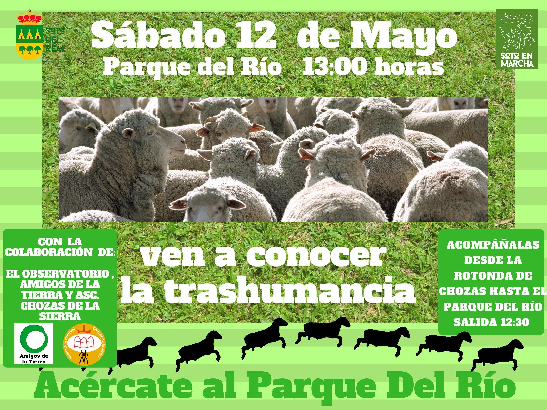 Ir a Madrid: Fiesta de la Trashumancia en Soto del Real