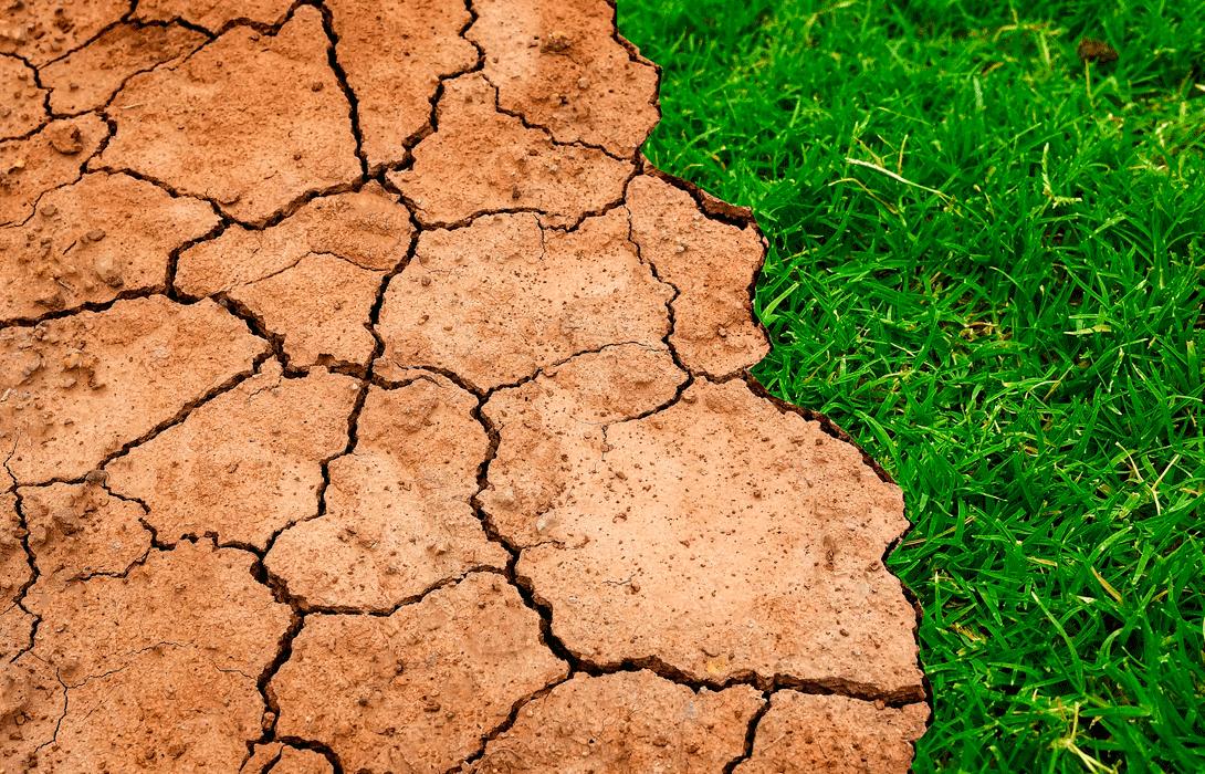 Ir a Empieza la Cumbre del Clima, COP24: es la hora de la verdad