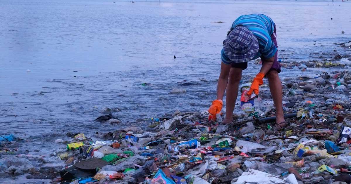 Ir a Un estudio revela los impactos del plástico sobre la salud