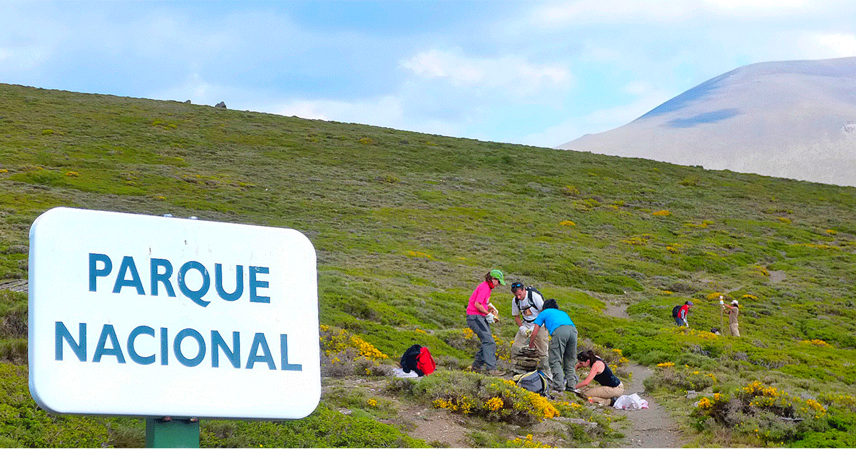 Ir a Voluntariado Ambiental en Parques Nacionales