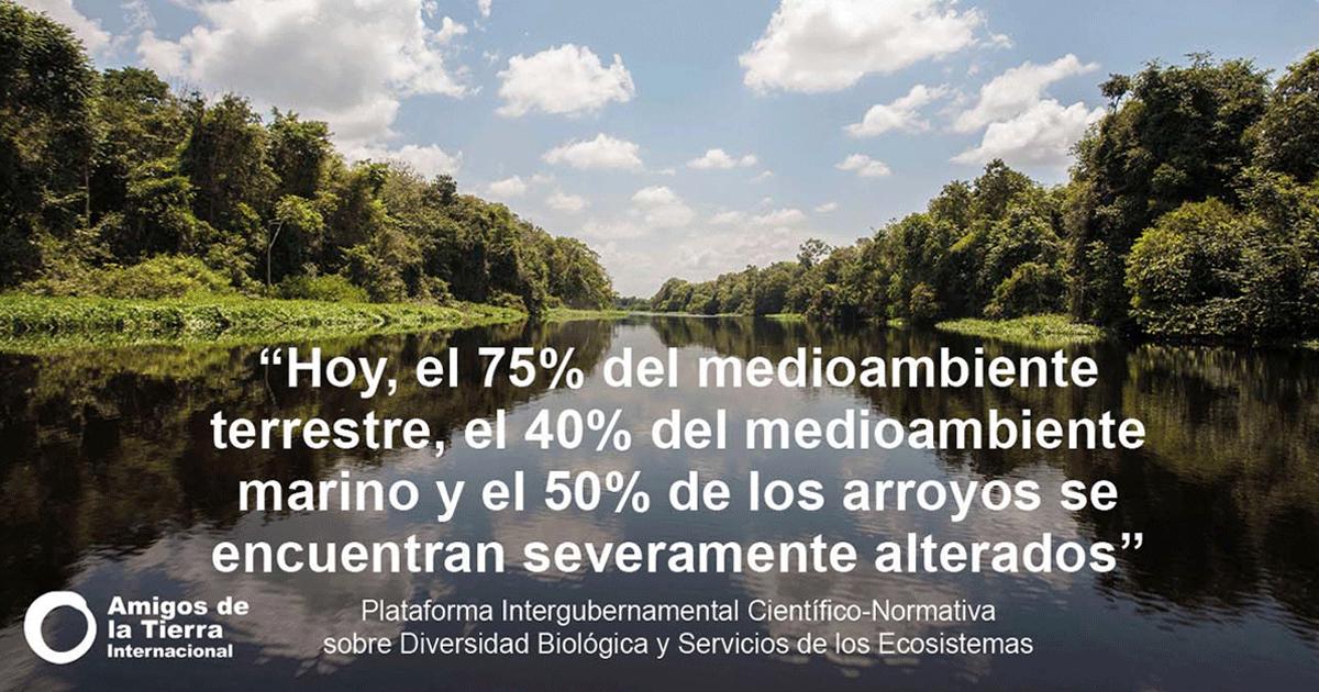 Ir a El IPBES alerta: si no cambia el sistema, la humanidad se enfrenta al colapso ecológico