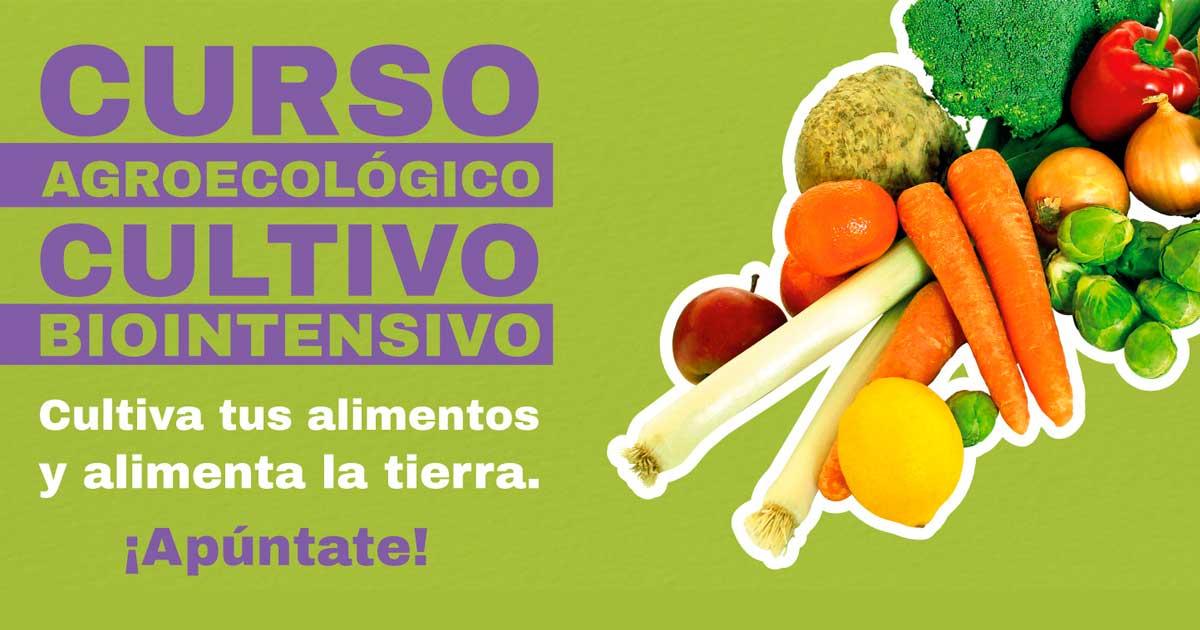 Ir a Madrid: Curso agroecológico – Cultivo Biointensivo de alimentos