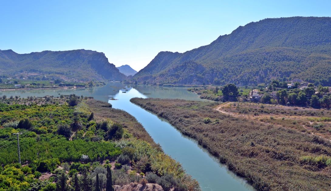 Ir a Las organizaciones ecologistas denunciamos que el Gobierno de la Región de Murcia desprotege el medio ambiente escudado en la COVID-19