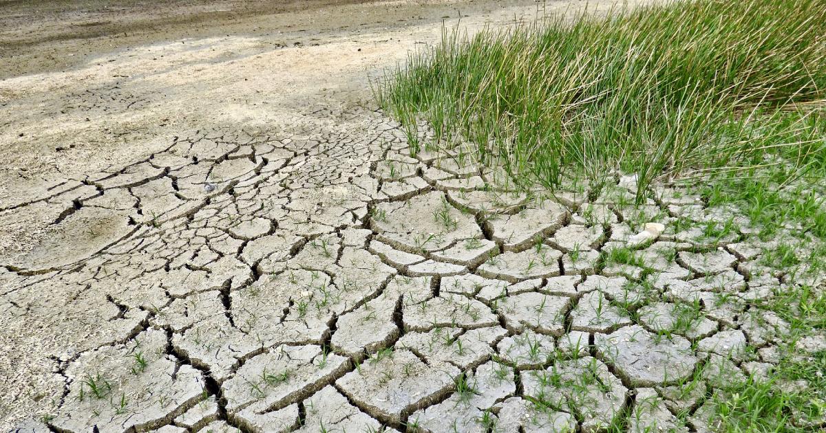 Ir a Valoramos positivamente el Plan Nacional de Adaptación al Cambio Climático, aunque reclamamos la inclusión real de criterios de justicia climática