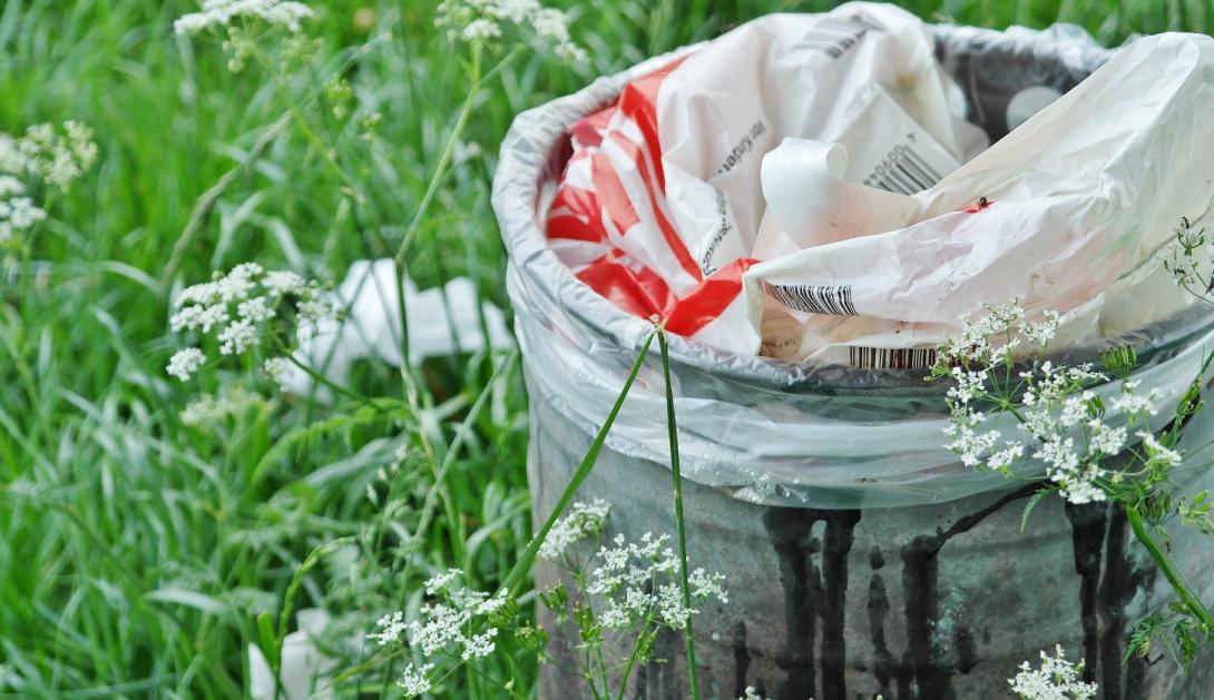Ir a Cinco puntos clave que deben guiar la nueva ley de residuos y empoderar a la ciudadanía hacia una transformación real