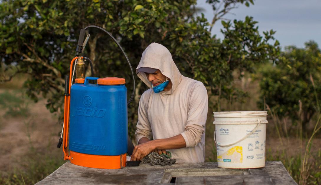 Ir a 149 pesticidas podrían estar cada día más cerca de nuestra alimentación