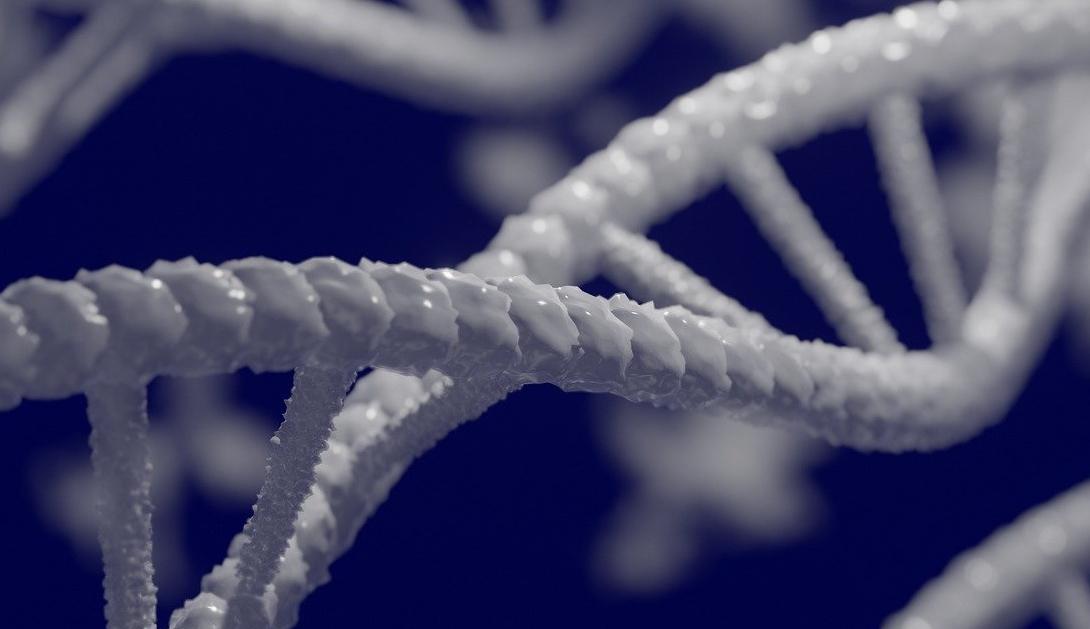 Ir a La Comisión Europea rompe sus propias reglas para permitir que la industria biotecnológica ayude a reescribir las leyes de seguridad de los transgénicos