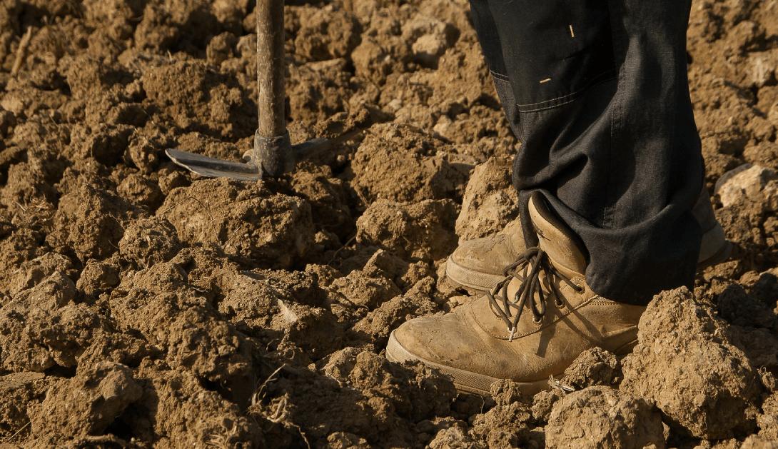 Ir a Pedimos al Ministerio de Agricultura condiciones de trabajo dignas para las personas que trabajan el campo